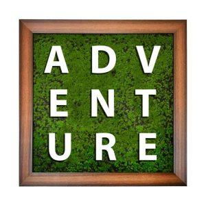 تابلو بوتانی Adventure